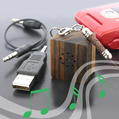 smallest speaker