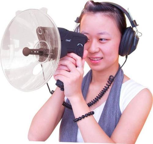 Bionic Ear
