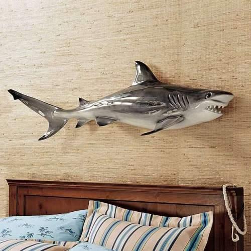 Wall Shark