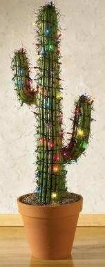 Illuminated Saguaro Cactus