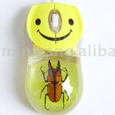 computer mouse images. Computer mouse with a real bug