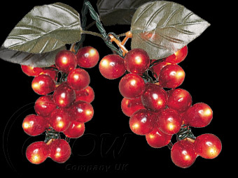 Outdoor String Lights Grapes : GRAPE STRING LIGHTS