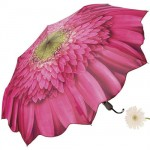 Gerber Daisy Umbrella