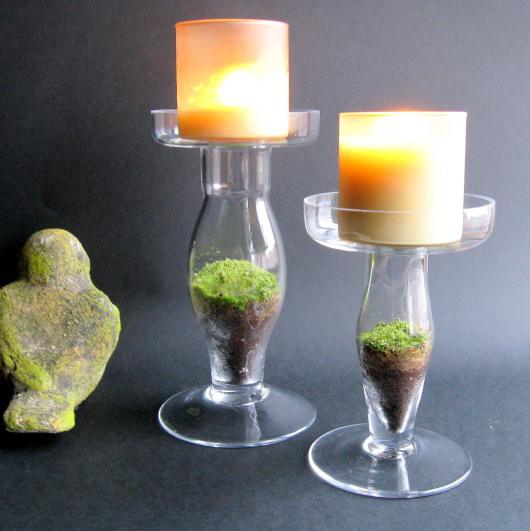 terrarium glass candle sticks