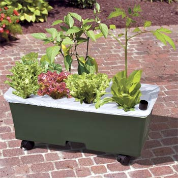 earthbox-garden-kit-355427