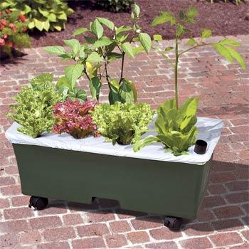 earthbox-garden-kit-355427