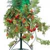 Topsy Turvy Tomato Tree