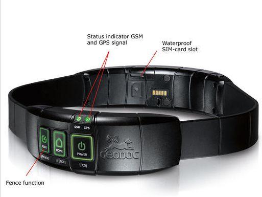 The dog collar with GPS