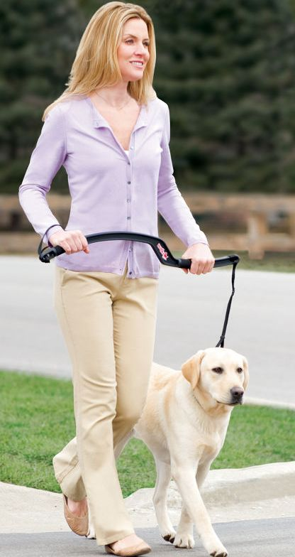The Dog Trainer's Leash