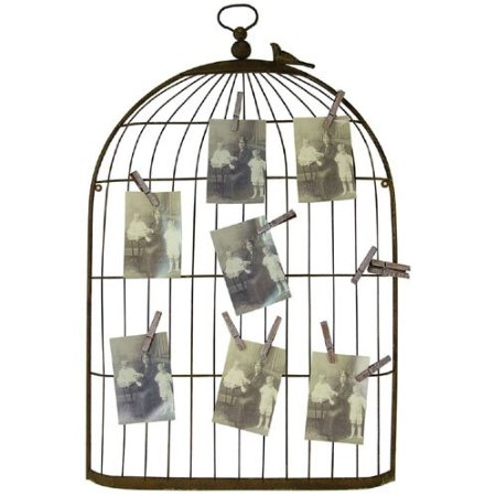 Metal Bird Cage Greeting Card, Photo Display with Clips
