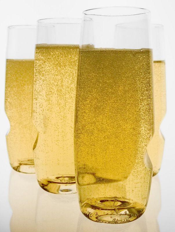 Govino Shatterproof Champagne Flute Wine Glass
