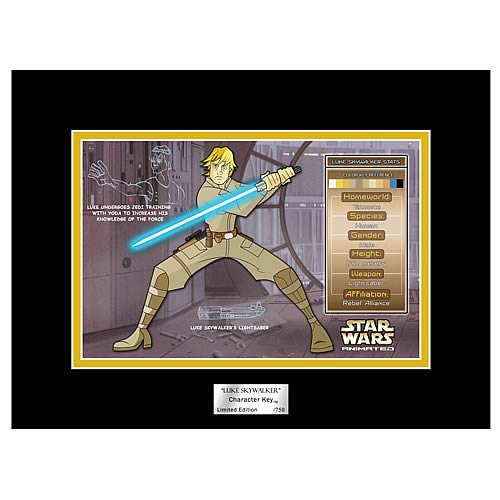 Star Wars Animated Luke Skywalker Character Key