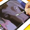 Sensu Capacitive Touch Artist Brush