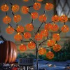 Solar Lighted Halloween Pumpkin Tree Stake
