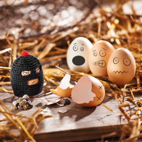 Egg Warmer Funky Eggs Egg-Bandit