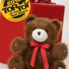 MP3 Player & Voice Recorder Smart Teddy Bear