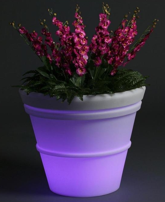 Illuminated Planter with Light Kit