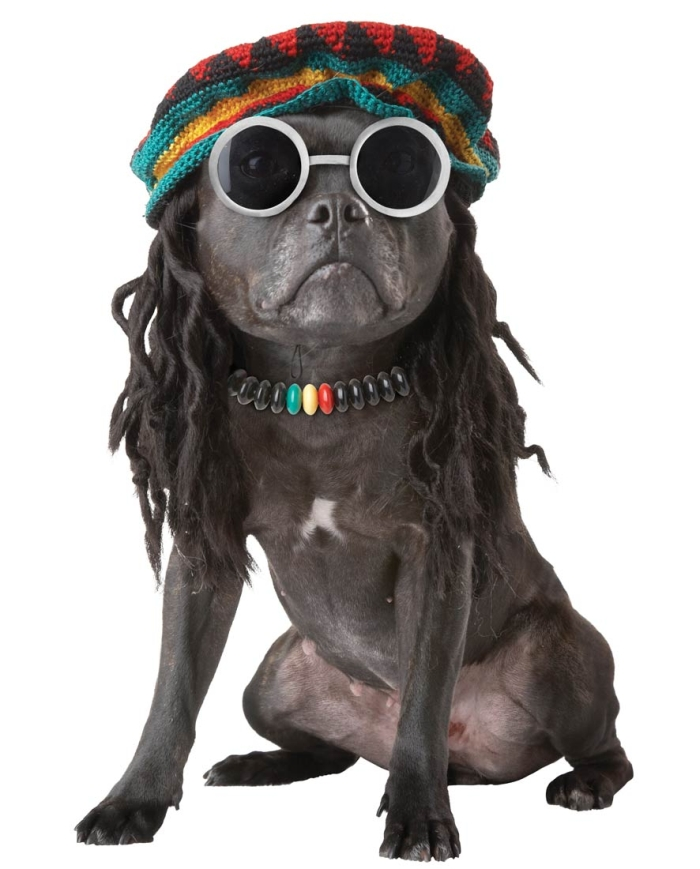20126-Rasta-Mon-Dog-Costume-large