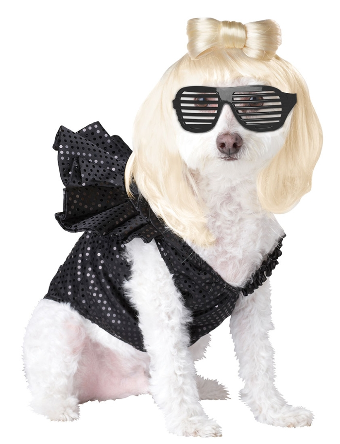PET20111-Lady-Dogga-Dog-Costume-large