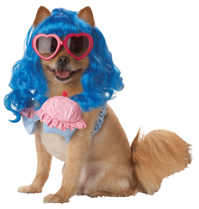 PET20112-California-Girl-Dog-Costume-large