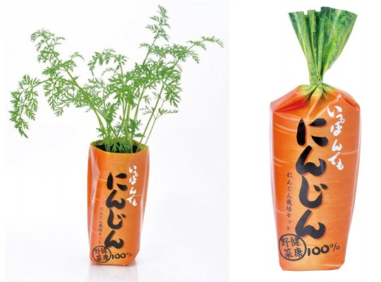 ippon-demo-ninjin-carrot-1