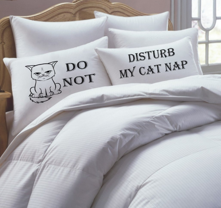 His Hers Pillowcase Set,Couples Pillowcase Set, Do Not Disturb My Cat Nap,