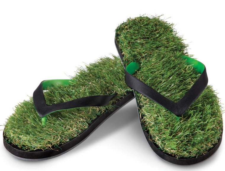 The Fescue Flip Flops