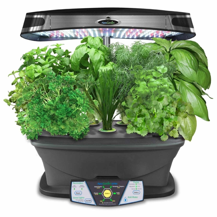 Aerogarden extra led indoor garden with gourmet herb seed kit for Indoor gardening gadgets
