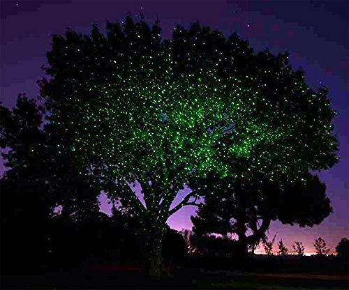 Bliss firefly fairy outdoor holiday dual laser lights color green aloadofball Image collections
