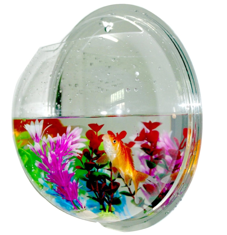 Fish bowls mount bubble aquarium acrylic fish tank for Acrylic fish bowl
