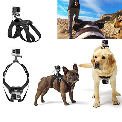 Dog Fetch Harness Chest Strap Belt Mount
