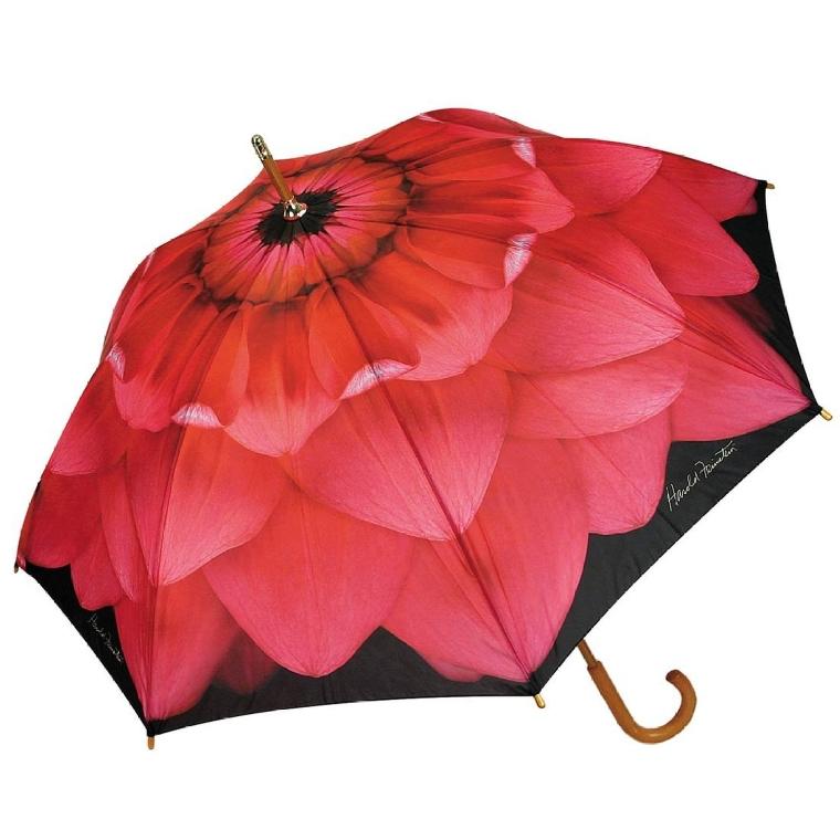 Harold Feinstein Pink Dahlia Cane Automatic Open Umbrella