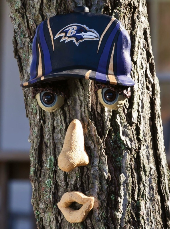 NFL Team Forest Face