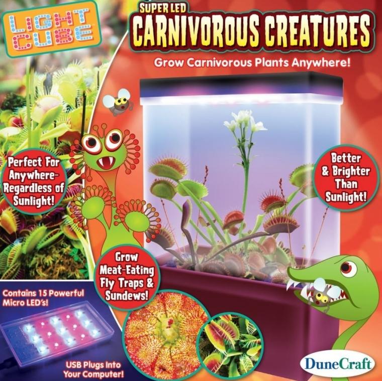 Carnivorous Creatures LED Light Cube Terrarium