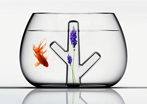 Glass Coral Fish Tank