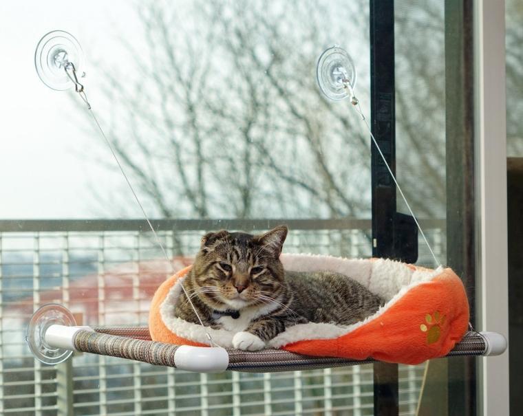 Original KITTY COT World's BEST Cat Perch