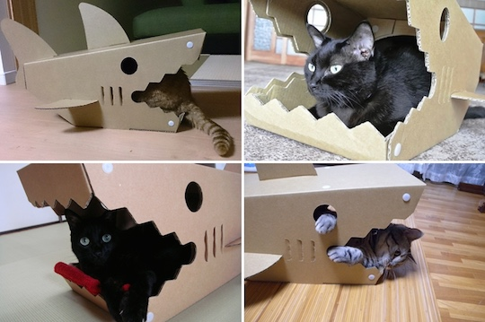 shark-house-pet-bed-cat-2