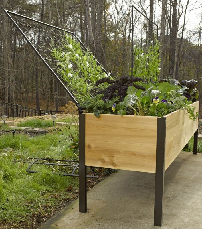 Elevated Cedar Planter Box and Space-Maker Pivoting Trellis Set