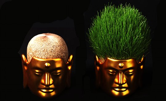 buddha-small-head-hair-flower-plant-pot-1