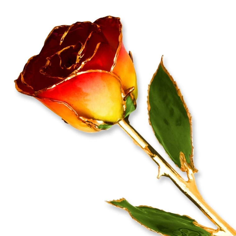24K Gold Trim Genuine Rose in Gold Gift Box