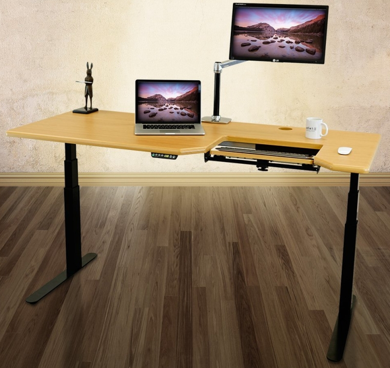 Omega EVEREST Electric Adjustable Height Standing Desk
