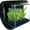 Silhouette Square Glass Aquarium Kit