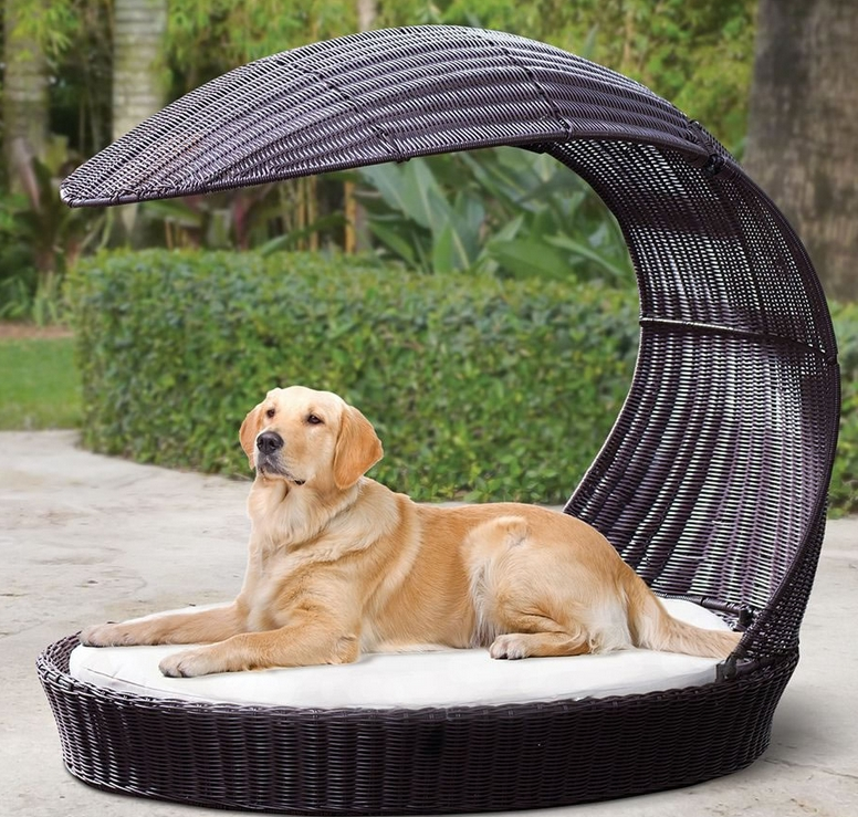 The Pet's Lounging Pergola