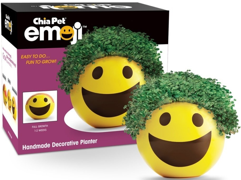 Emoji Smiley Handmade Decorative Planter