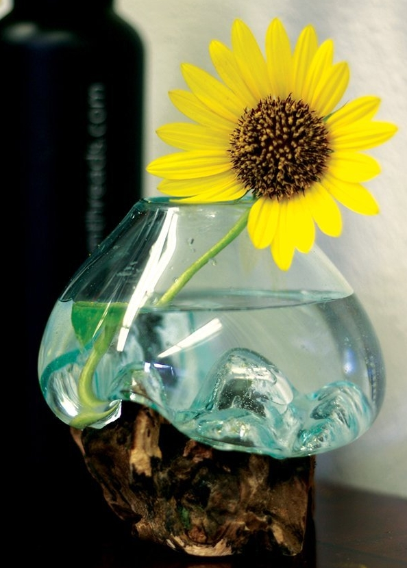 Glass and Wood Root Sculptured Terrarium  Vase  Fish Bowl