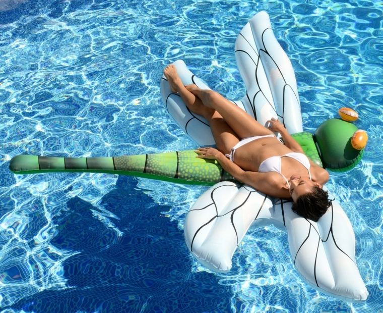 Light-Up Dragonfly Pool Float
