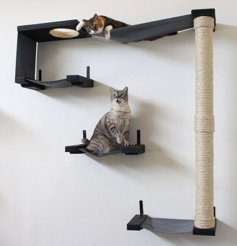 Cat Hammock & Climbing Activity Center