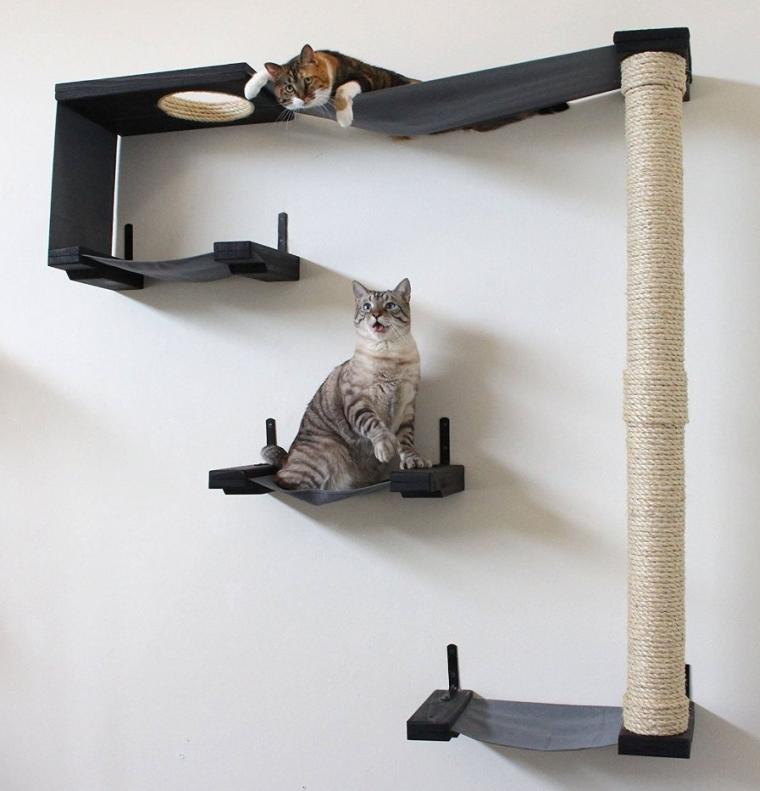 Cat Hammock & Climbing Activity Center