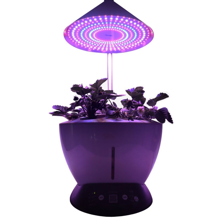Hydroponic LED Indoor Smart Mini Herb Garden