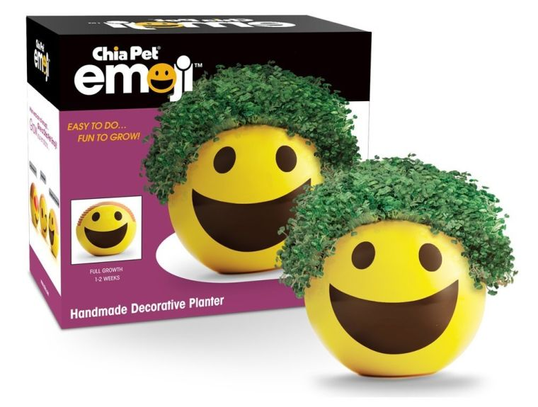 chia-emoji-smiley-handmade-decorative-planter